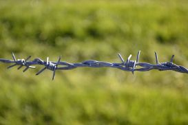 1024px-Ex-Iron_Curtain_barbed_wire