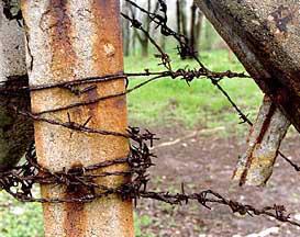 KZ-Buchenwald_Stacheldraht