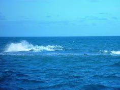 800px-Wave_open_sea